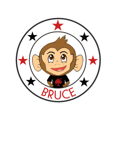 BRUCE star circle 2