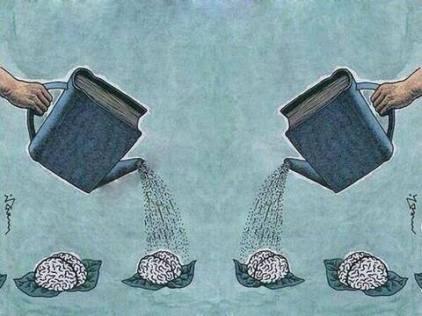 feed-your-brain.jpg
